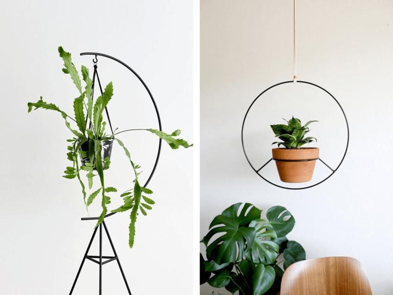 Suport plante camera