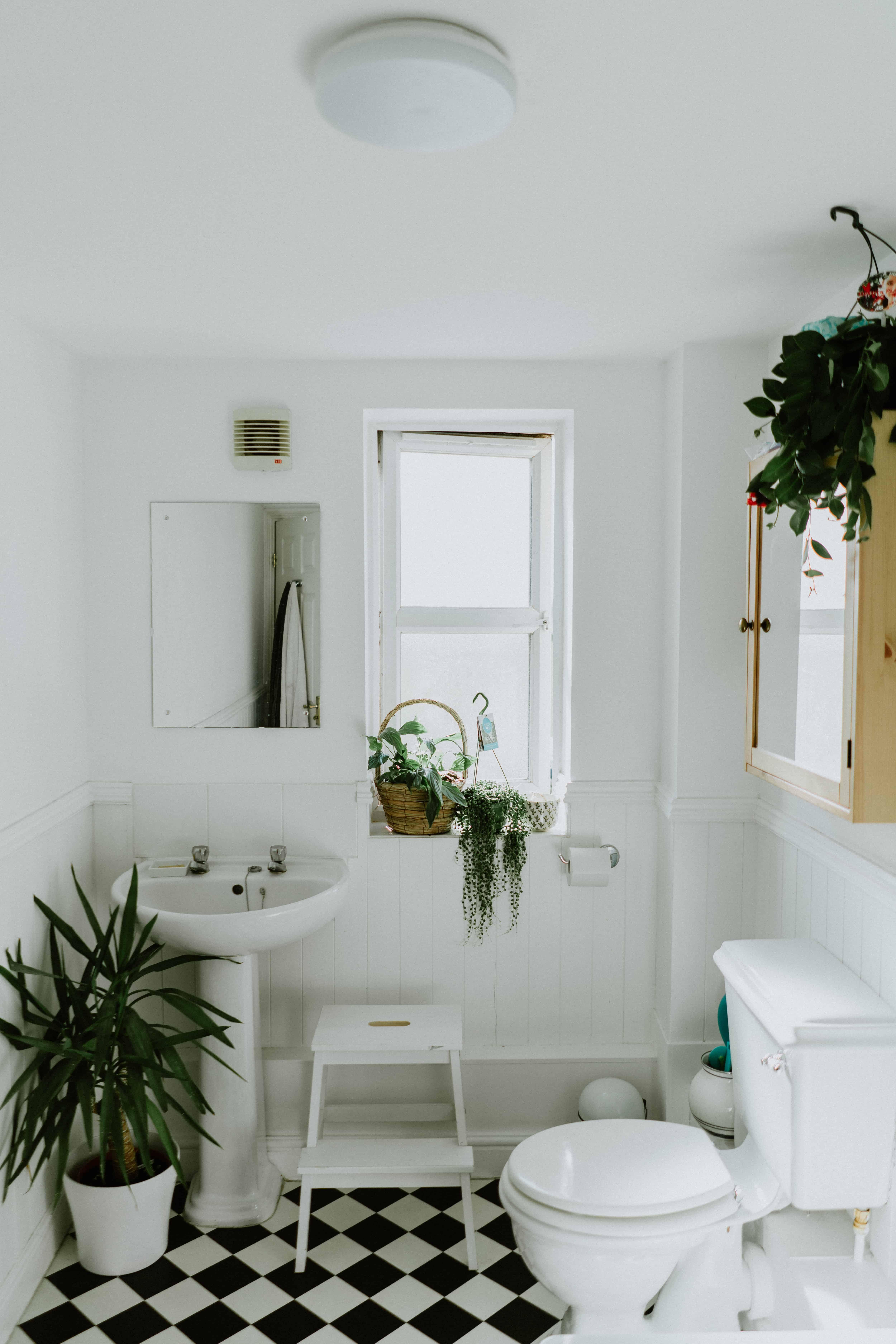 O baie mica de apartament, decorata in stil scandinav, cu mobiler si instalatii sanitare albe, gresie alb si negru, plante, o fereastra si doua oglinzi montate pe pereti diferiti