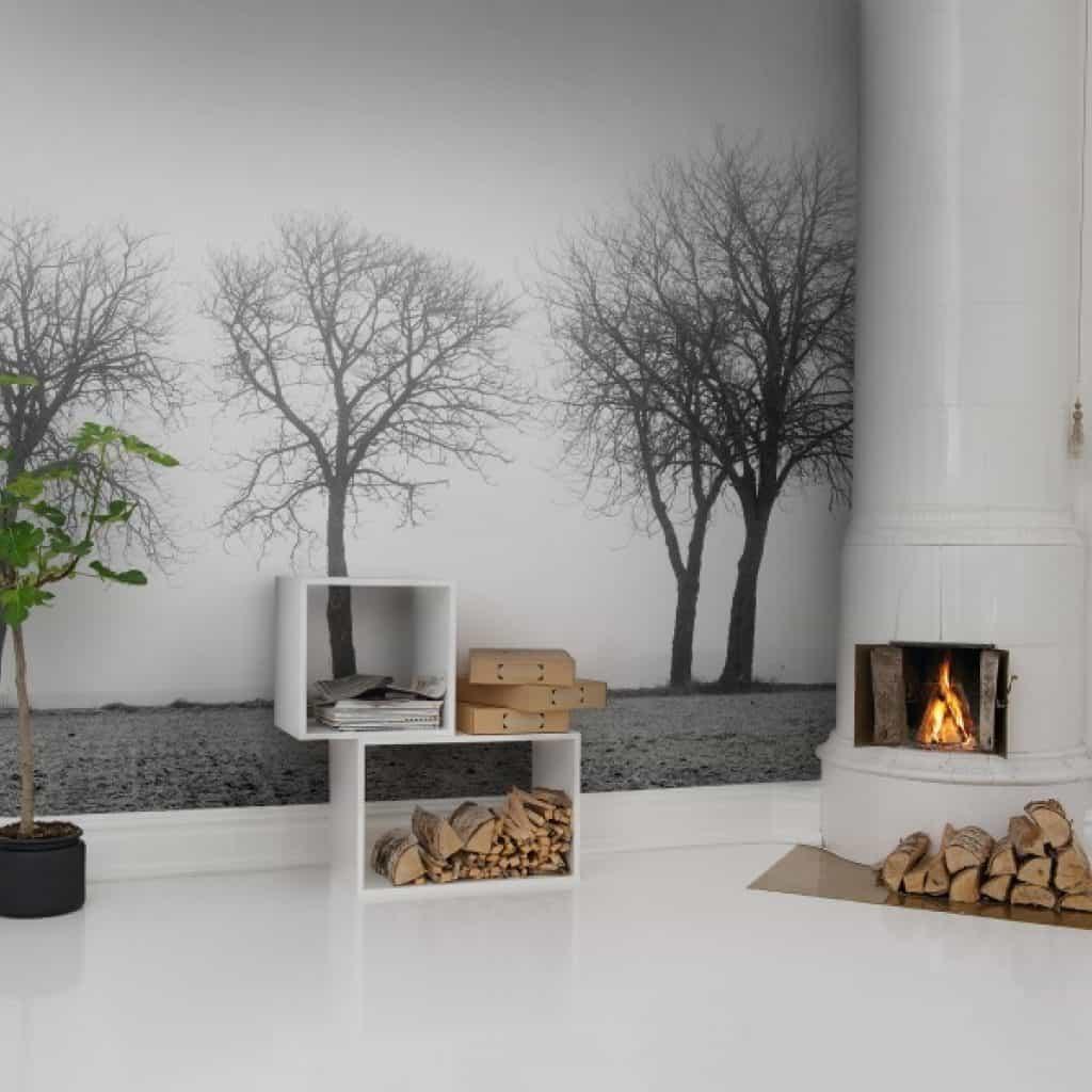 perete cu fototapet 3 D care ilustreaza copaci in toner alb si negru