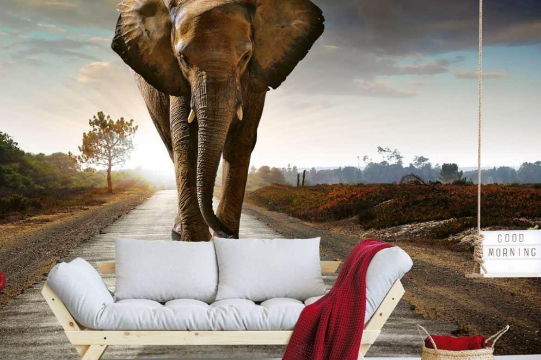 tapet cu un elefant mare intr-un living decorat simplu, cu o canapea gri cu bej deschis, podea alba si obiecte de decor rosii