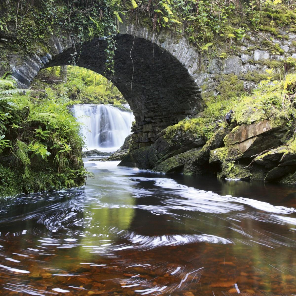 Foto tapet 3D Ireland, Dimex, 5 fâșii, 375 x 250cm