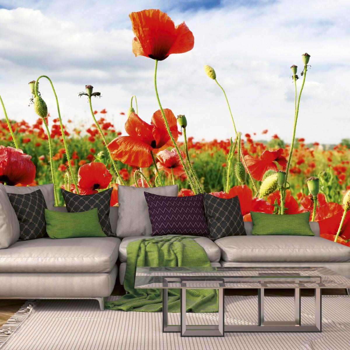 Foto tapet 3D Red Poppies, Dimex, 5 fâșii, 375 x 250cm