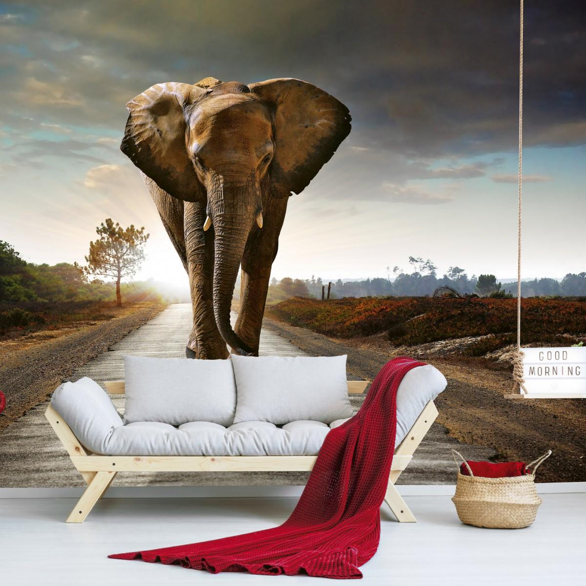 Foto tapet 3D Walking Elephant, Dimex, 5 fâșii, 375 x 250cm