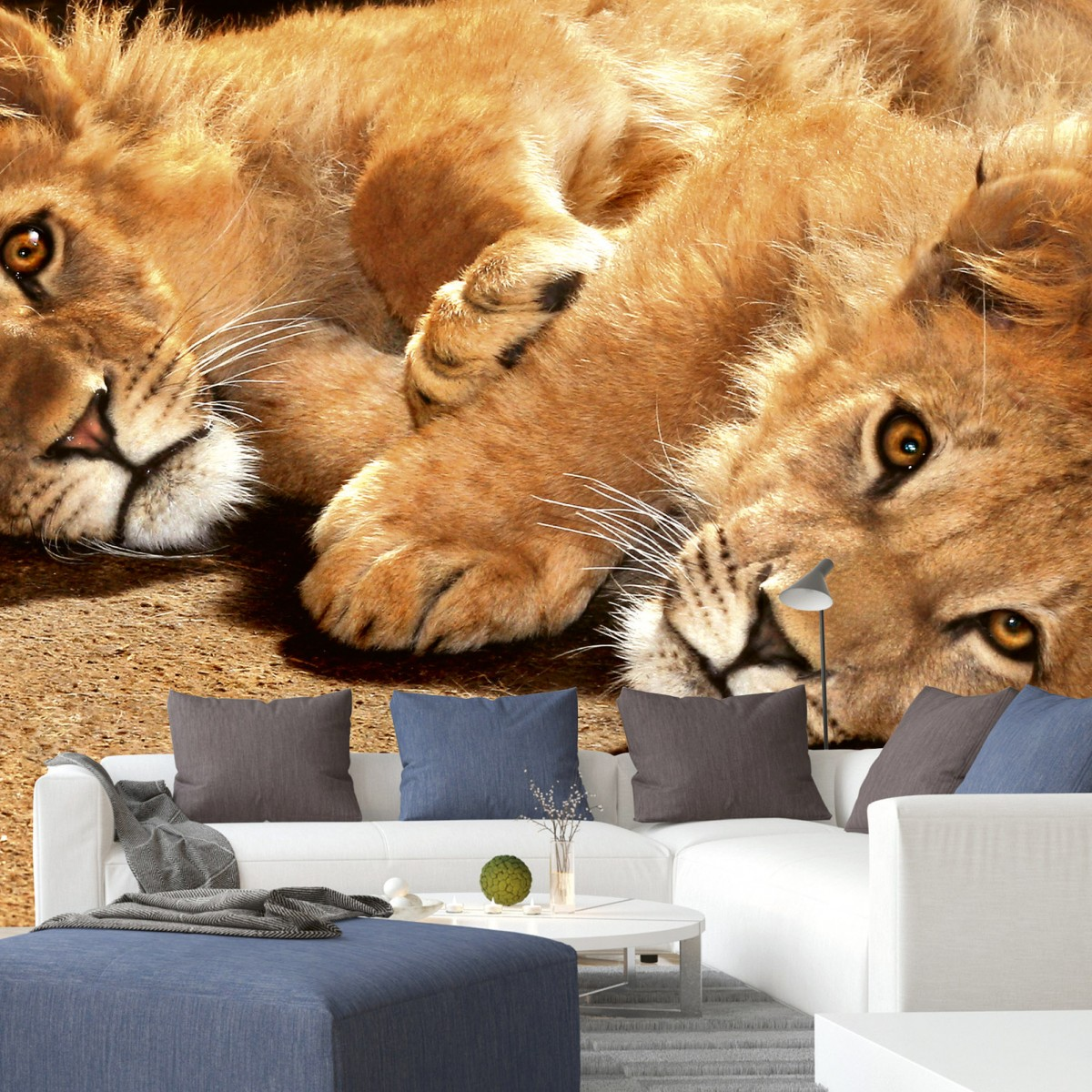 Foto tapet 3D Young Lions, Dimex, 5 fâșii, 375 x 250cm