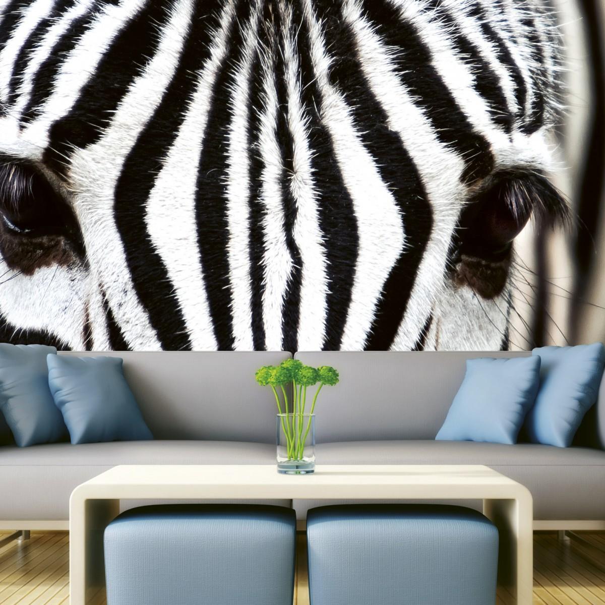 Foto tapet 3D Zebra, Dimex, 5 fâșii, 375 x 250cm