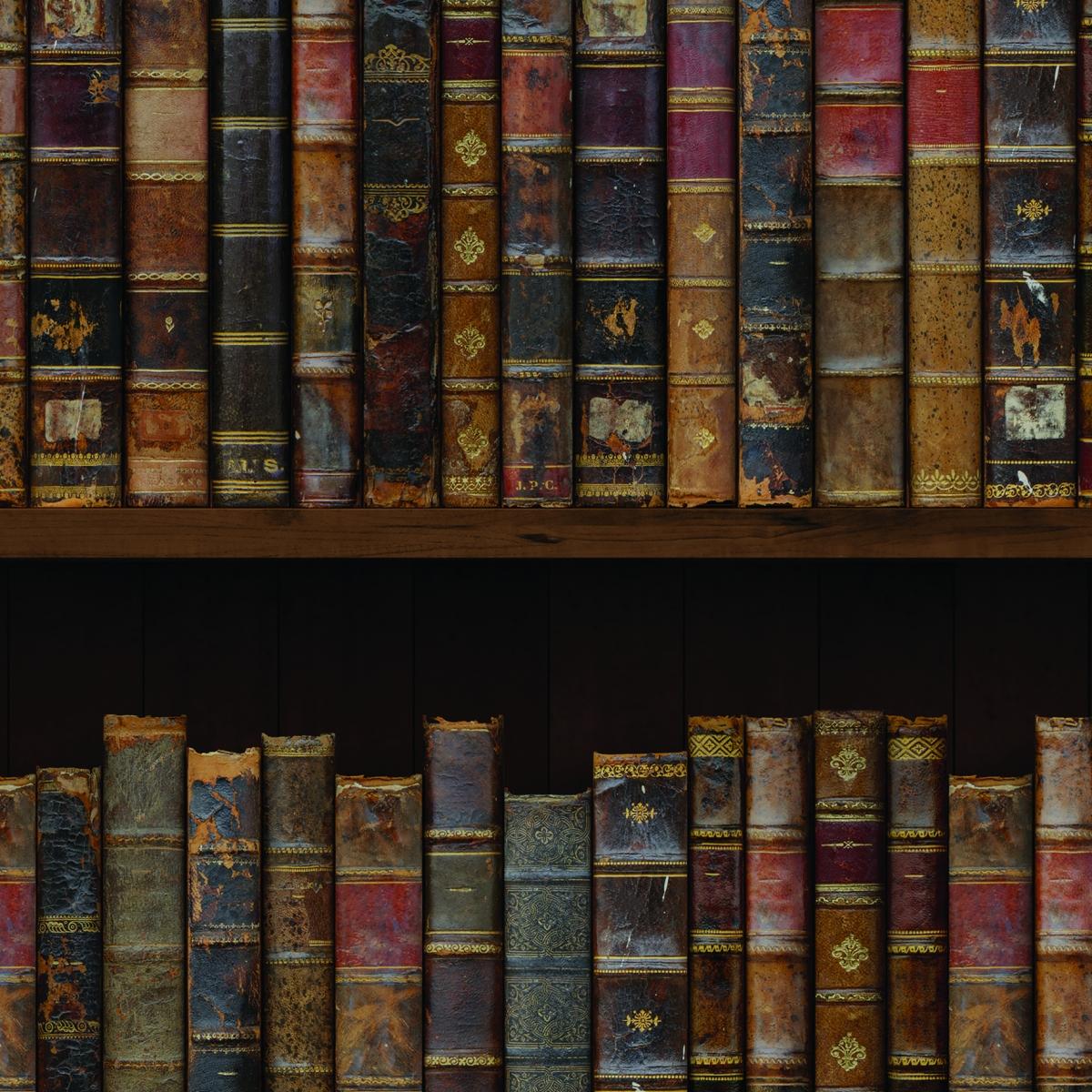 Tapet designer The Library (Vintage Book) - Feathr