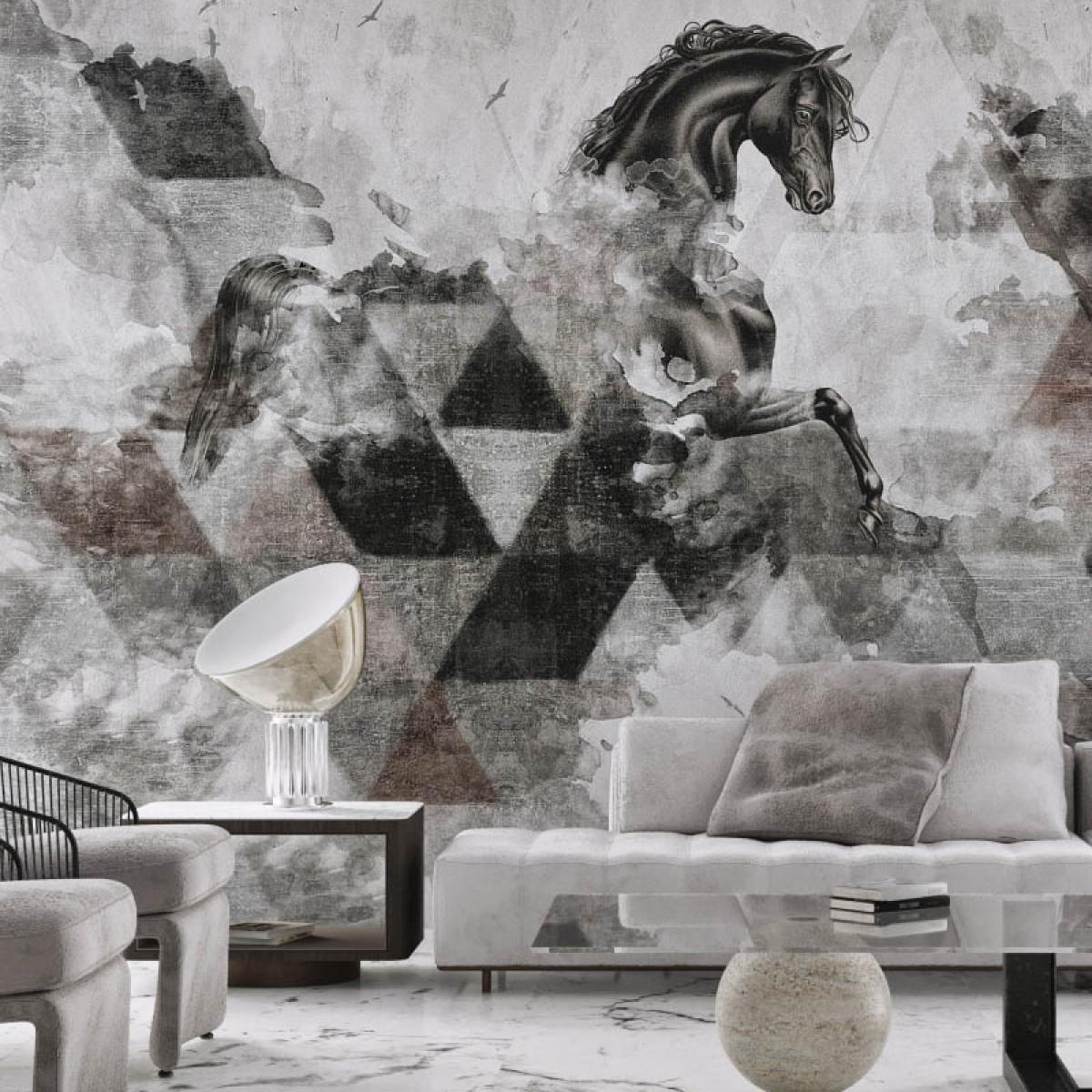 Fototapet contemporan Apollon, personalizat, idea murale
