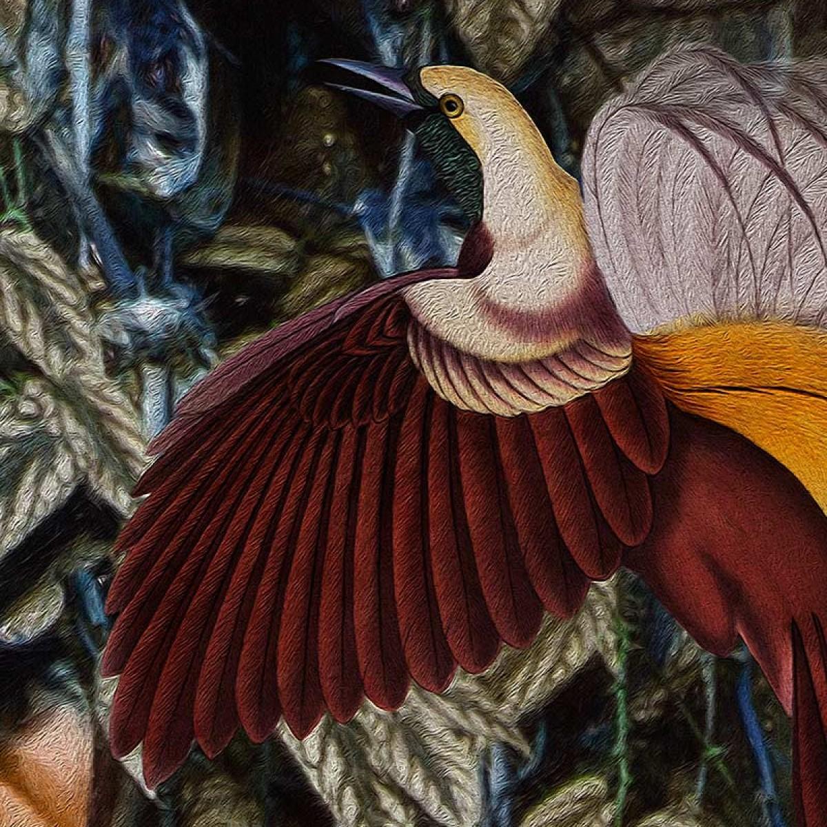 Fototapet contemporan Wild at Heart, personalizat, idea murale