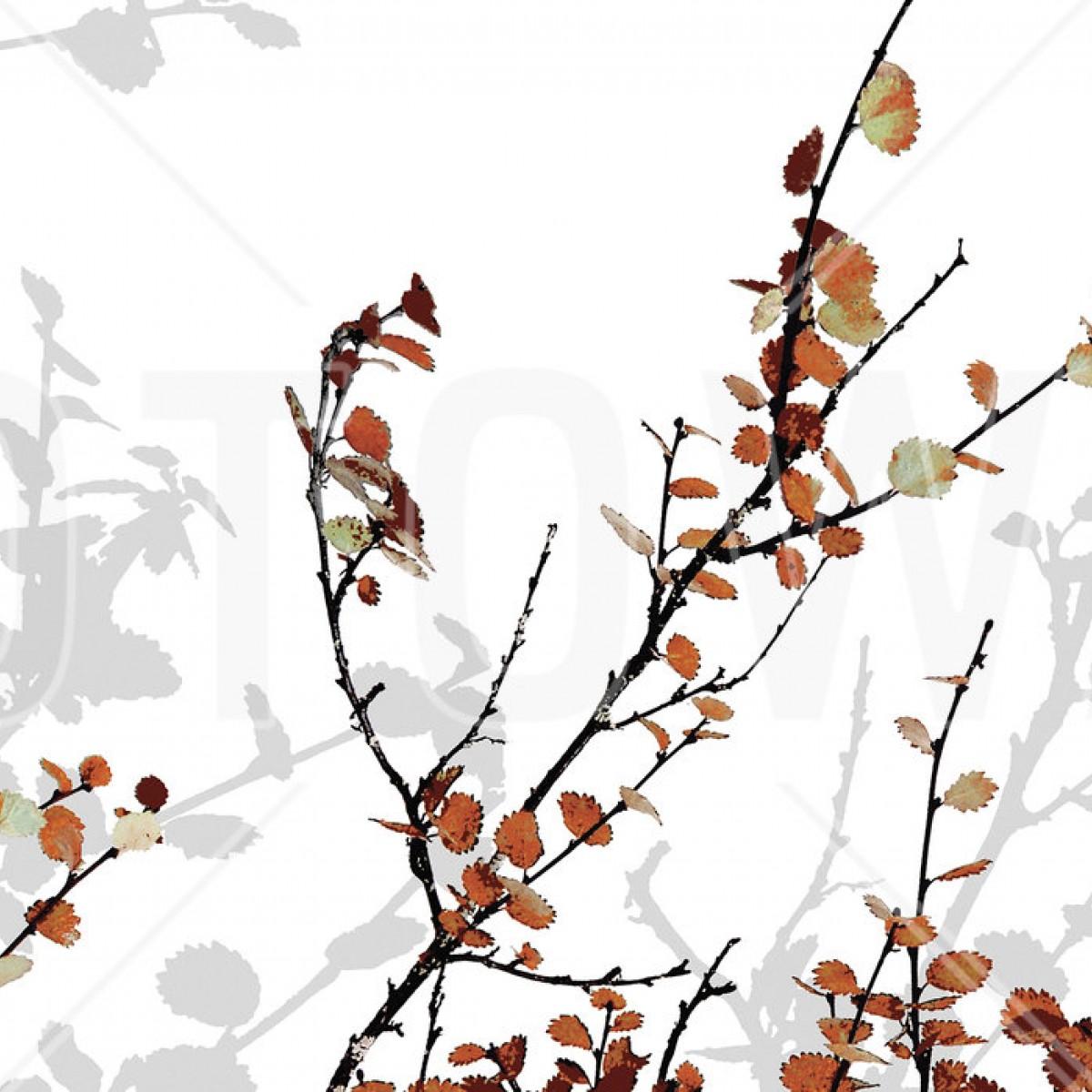 Fototapet Mountain Birch Orange, personalizat, Photowall