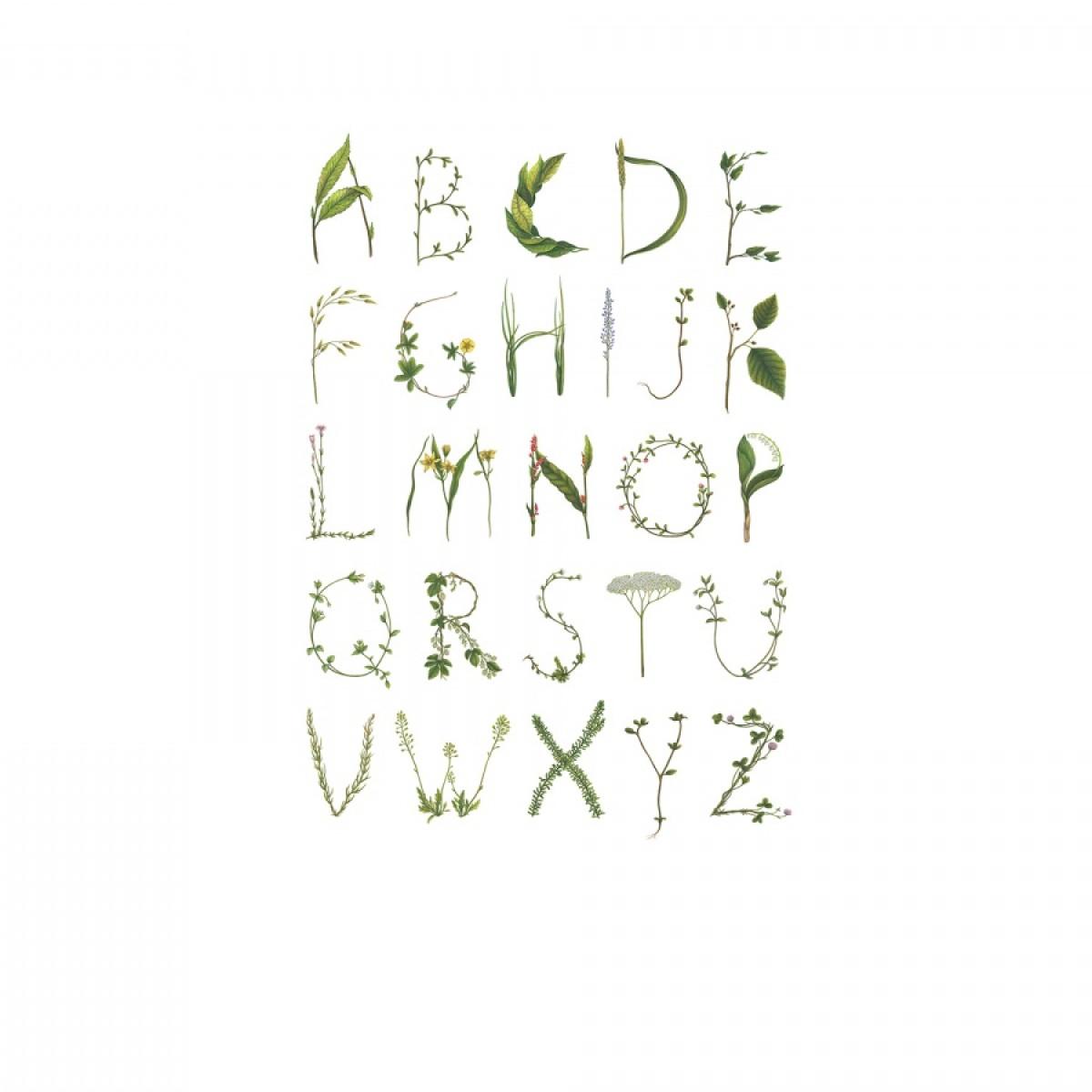 Fototapet ABC verde, personalizat, Rebel Walls