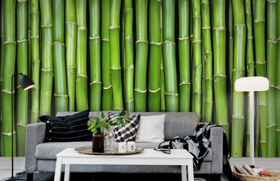 Foto tapet 3D Bambus, personalizat, Rebel Walls