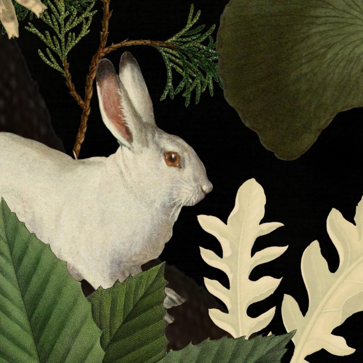 Foto tapet 3D Rabbit Hole, Moss, Oxygen, personalizat, Rebel Walls