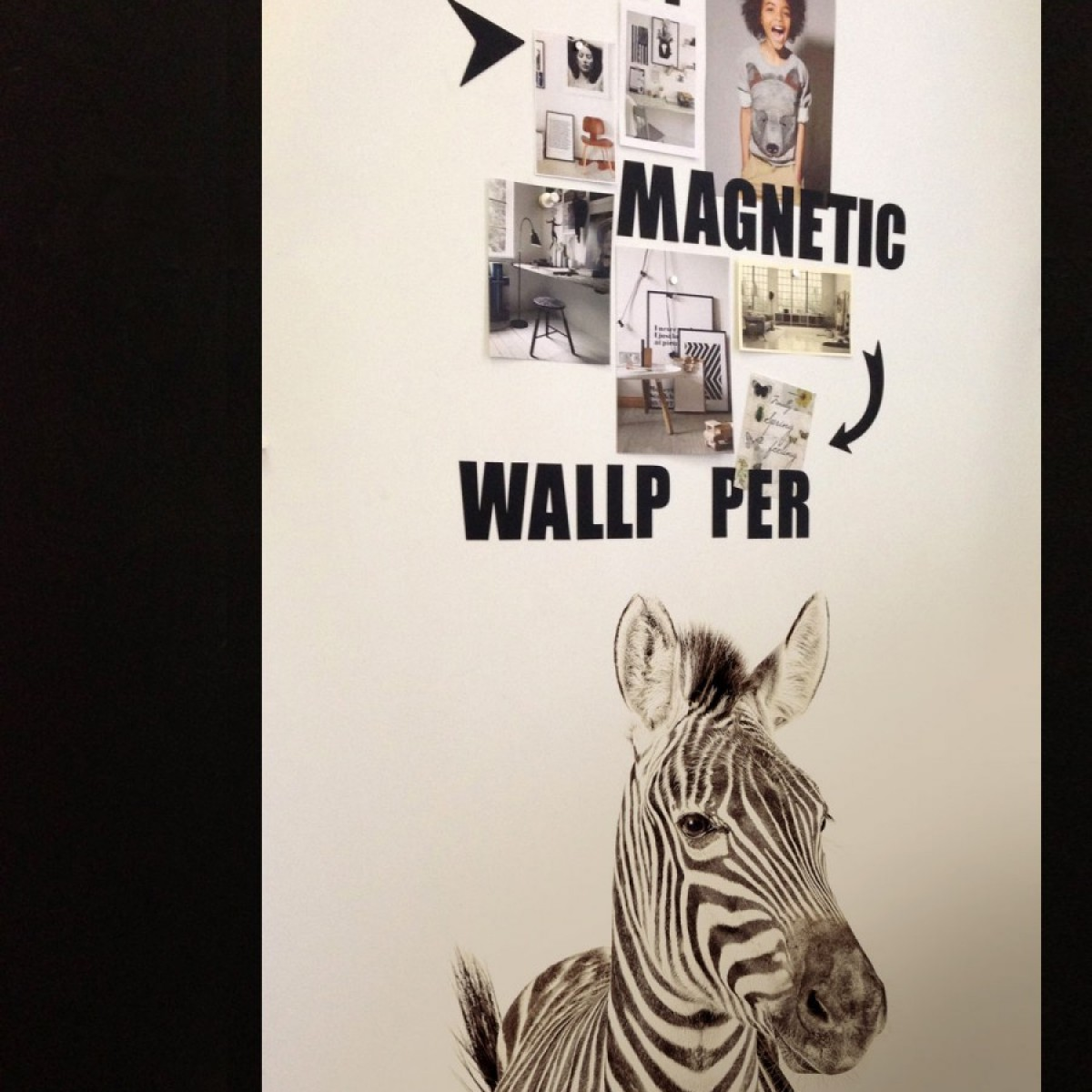 Tapet magnetic, zebra