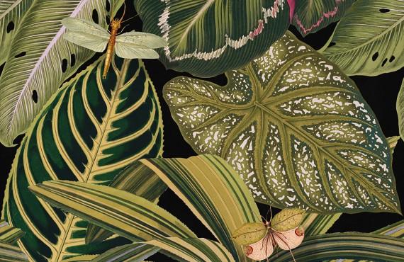 Tapet designer AMAZONIA, MINDTHEGAP