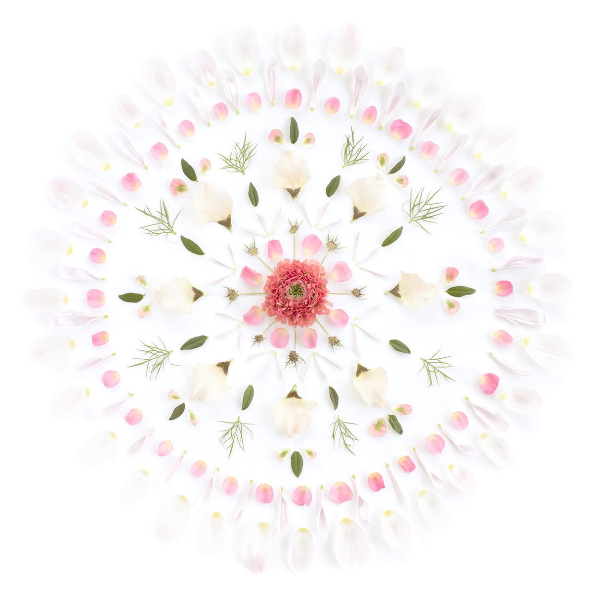 Tapet lavabil Flower Mandala 629-02, Sandberg, 0.81mp / rola