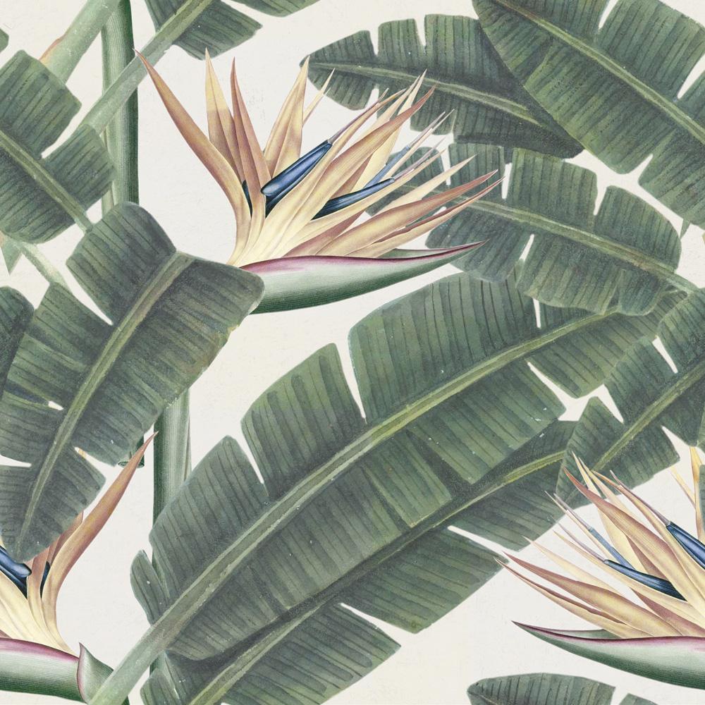 Tapet Designer Nature Tropical Bloom Mindthegap